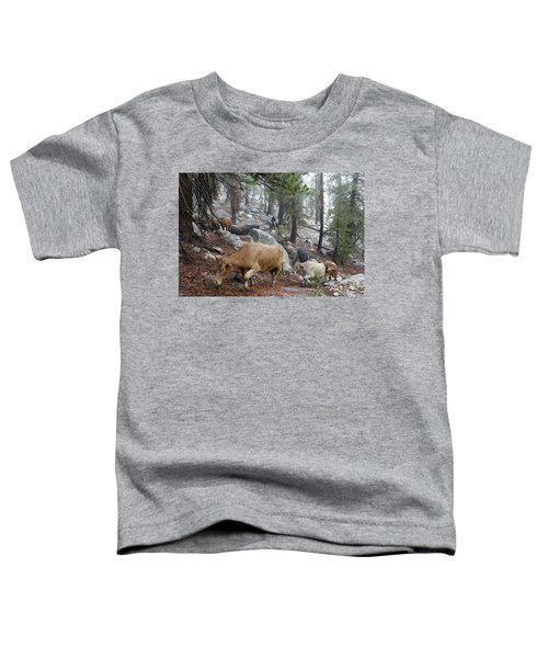 Mountain Climbing Toddler T-Shirt