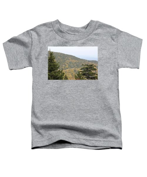 Mountain Passage Toddler T-Shirt