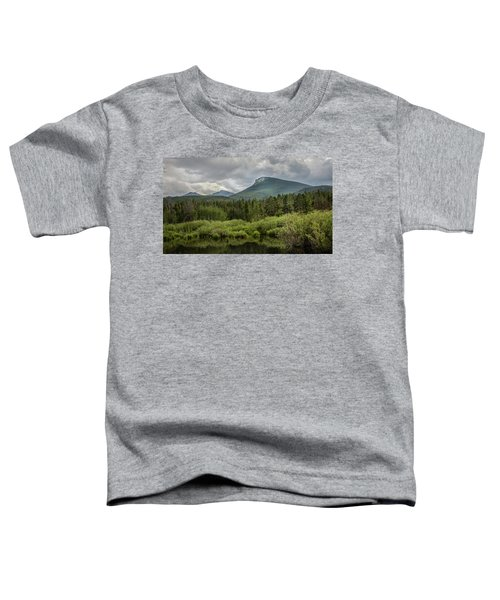 Mountain View From The Marsh Toddler T-Shirt