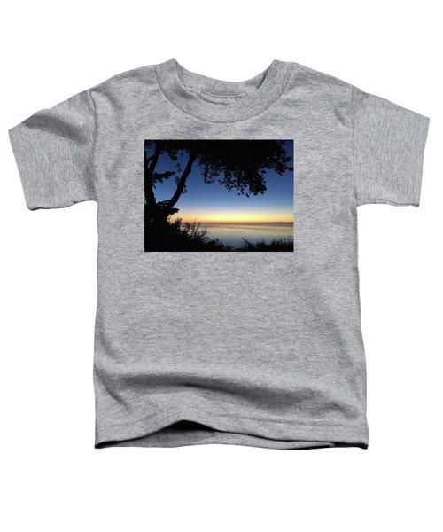 Mourning Toddler T-Shirt