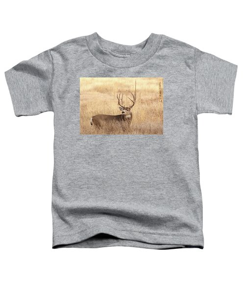 Muledeerbuck2 Toddler T-Shirt