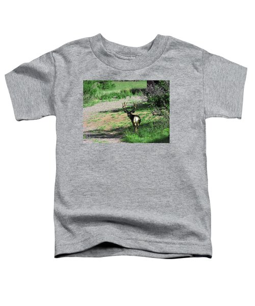 Muledeerbuck7 Toddler T-Shirt