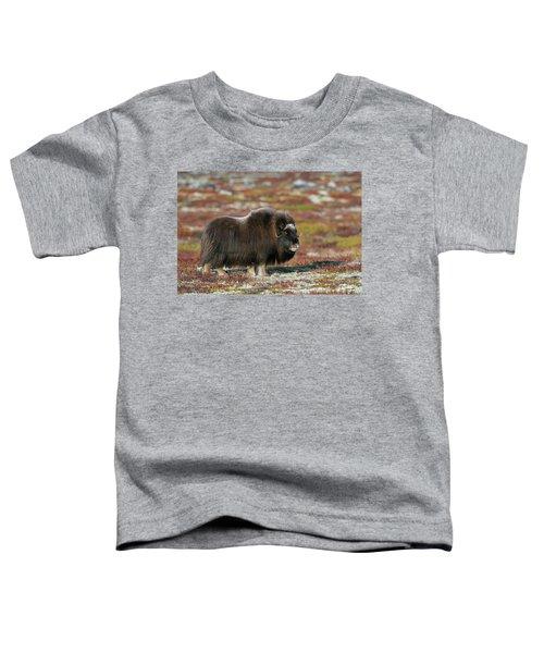 Muskox Toddler T-Shirt