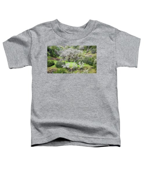 Mysterious Landscape In Sonoma County Toddler T-Shirt