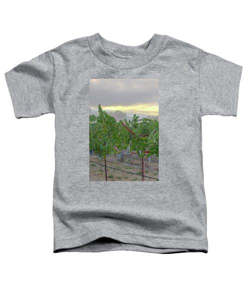 Napa Valley At Dawn Toddler T-Shirt