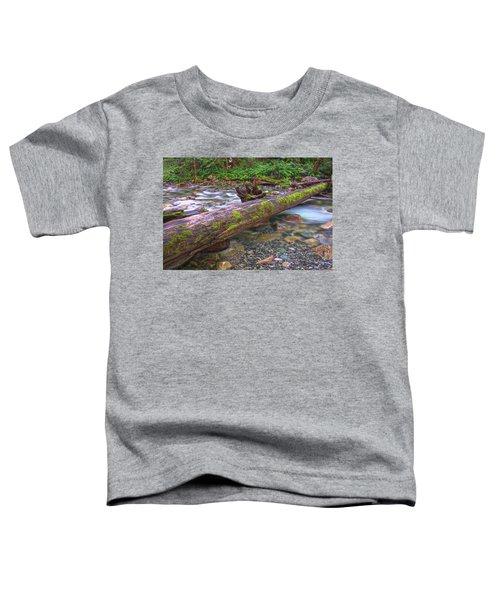 Natural Bridge Toddler T-Shirt