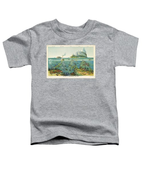 Nature - In - Descending - Regions - Geological Chart Toddler T-Shirt