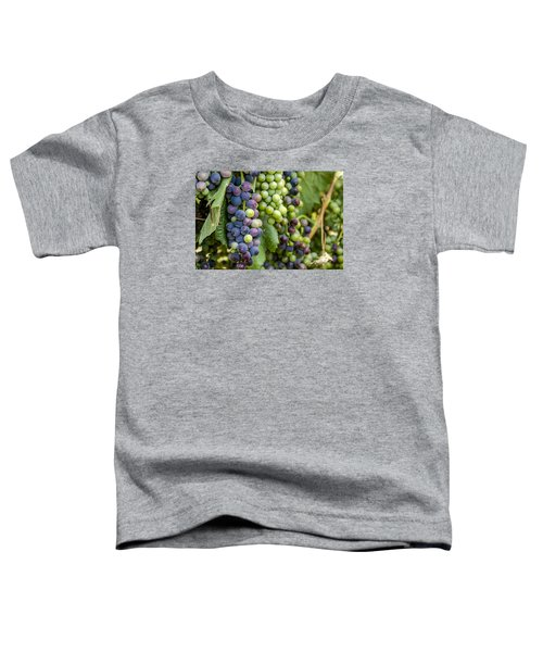 Natures Colors In Wine Grapes Toddler T-Shirt