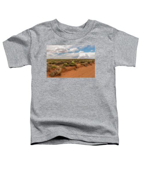 Navajo Reservation Toddler T-Shirt
