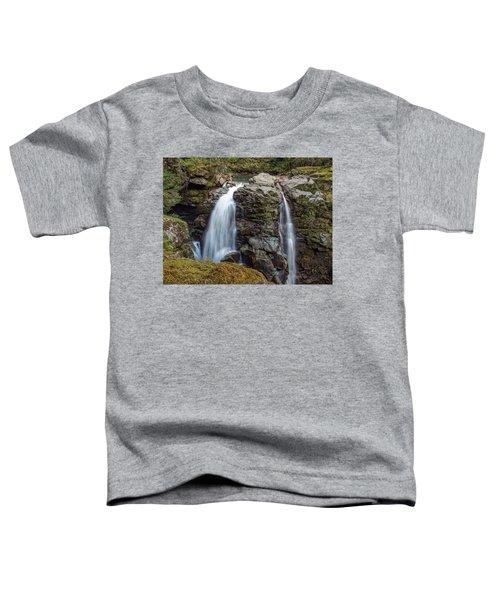 Nooksak Falls Toddler T-Shirt