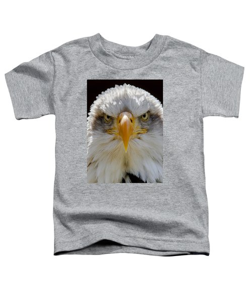 North American Bald Eagle  Toddler T-Shirt