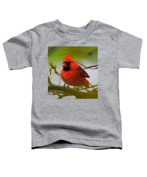 North Carolina Cardinal Toddler T-Shirt