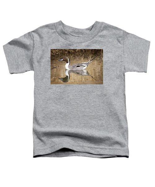 Northern Pintail Drake Toddler T-Shirt