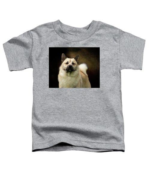 Norwegian Buhund Toddler T-Shirt