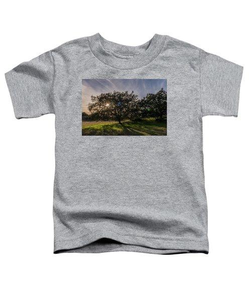 Oak Sunburst Toddler T-Shirt