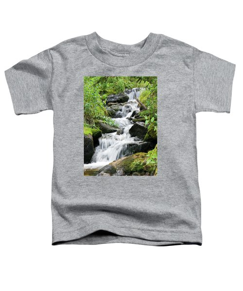 Oasis Cascade Toddler T-Shirt by David Chandler