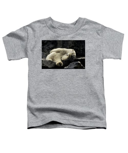 Oh What A Night Polar Bear Toddler T-Shirt