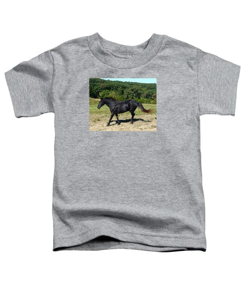 Old Black Horse Running Toddler T-Shirt