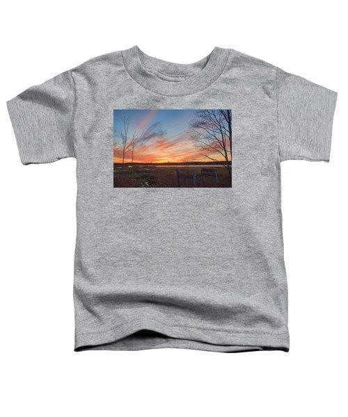 Old Bog Sunset Toddler T-Shirt
