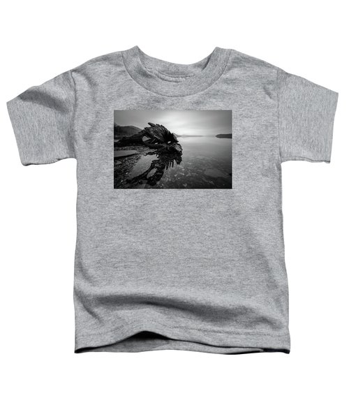 Old Driftwood Toddler T-Shirt