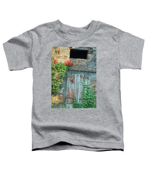 Old Farm Door Toddler T-Shirt