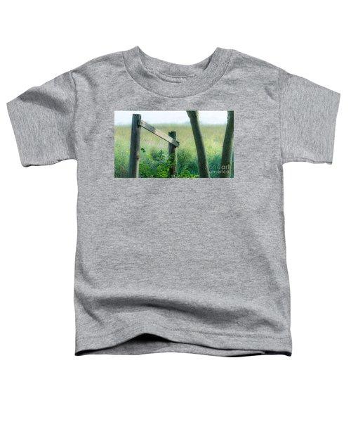 Old Hand Rail Toddler T-Shirt