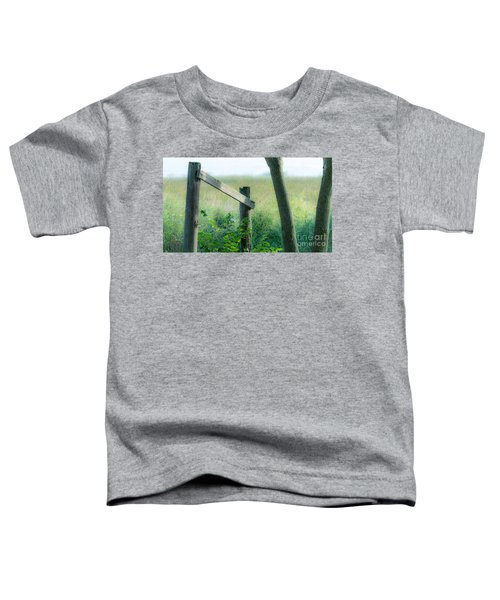 Old Hand Rail Toddler T-Shirt