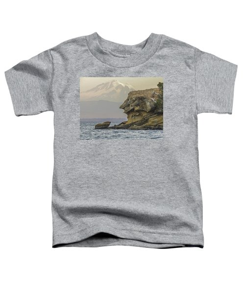 Old Man And The Mountain Toddler T-Shirt