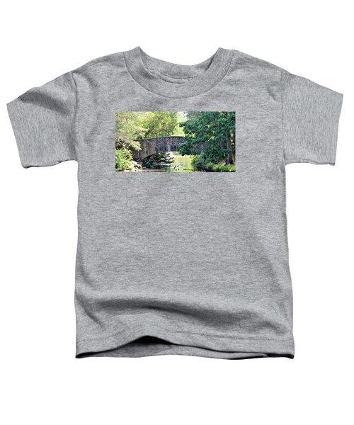 Old Stone Walkway Toddler T-Shirt