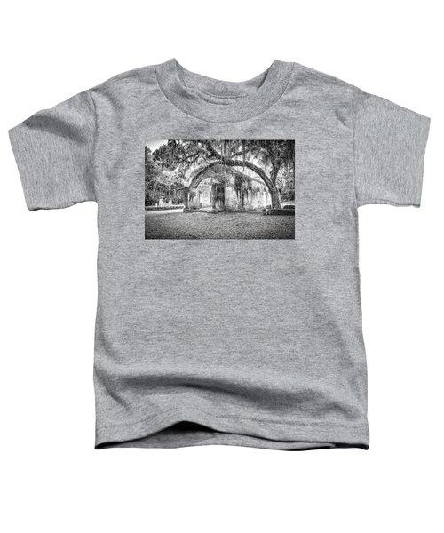 Old Tabby Church Toddler T-Shirt