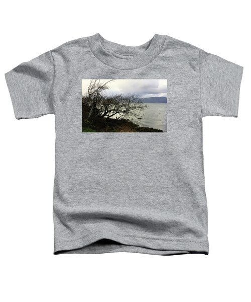 Old Tree By The Bay Toddler T-Shirt