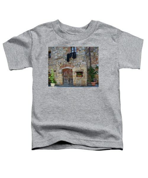 Old World Door Toddler T-Shirt