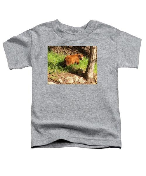 On Monrovia Trail Toddler T-Shirt
