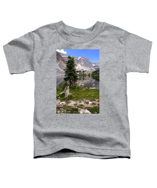 On The Snowy Mountain Loop Toddler T-Shirt