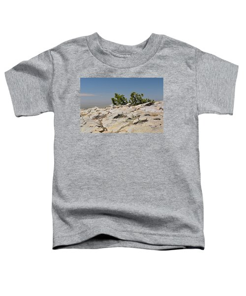 On Top Of Sandia Mountain Toddler T-Shirt