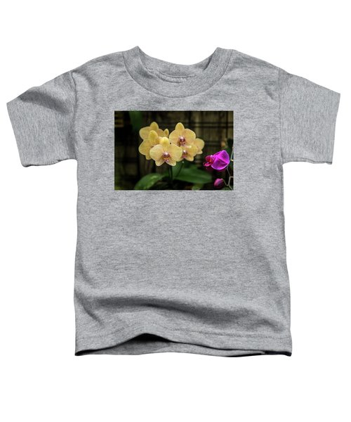 Orange Orchids Toddler T-Shirt