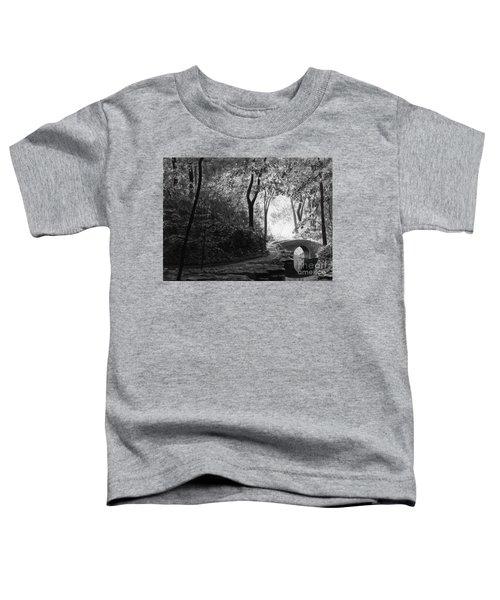 Oriental Garden Toddler T-Shirt