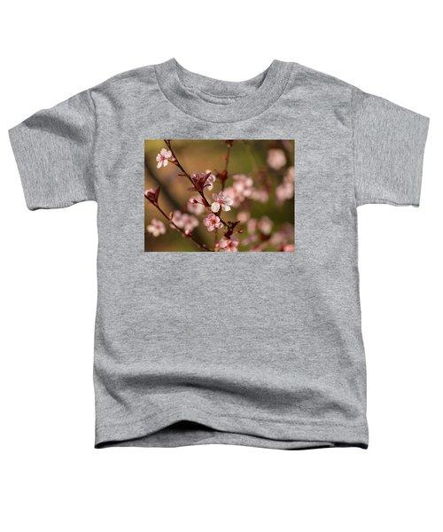 Purple Leaf Sandcherry Blossoms 2 Toddler T-Shirt
