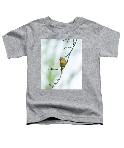 Out On A Limb 2 Toddler T-Shirt