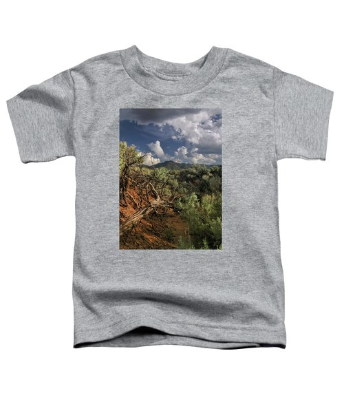 Out On The Mesa 2 Toddler T-Shirt