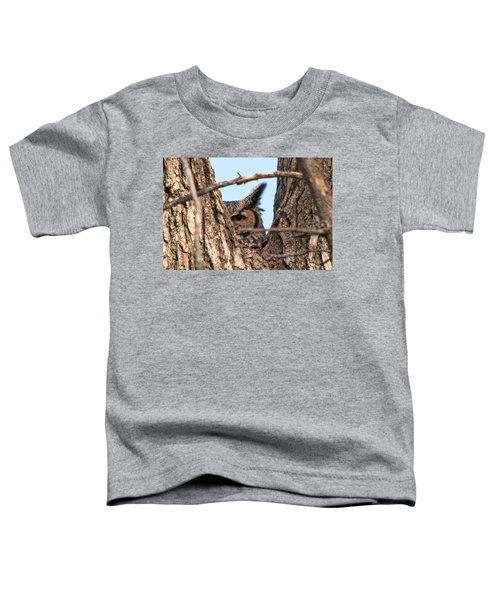 Owl Peek Toddler T-Shirt
