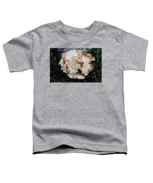 Oyster Mushroom Toddler T-Shirt