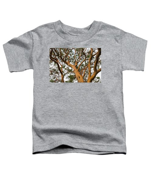 Pacific Madrone Trees Toddler T-Shirt
