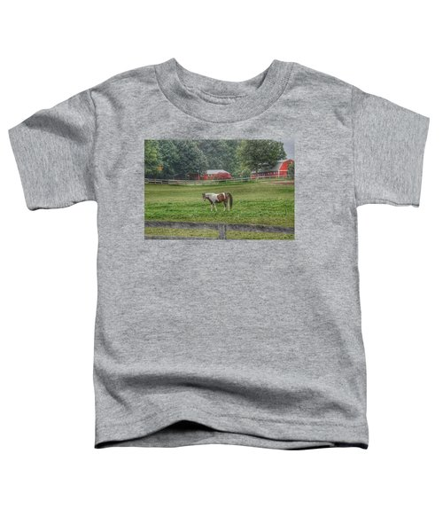 1005 - Painted Pony In Pasture Toddler T-Shirt