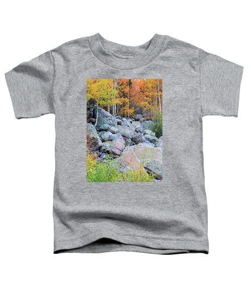 Painted Rocks Toddler T-Shirt by David Chandler