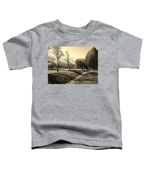 Painting With Shadows - Sepia Toddler T-Shirt
