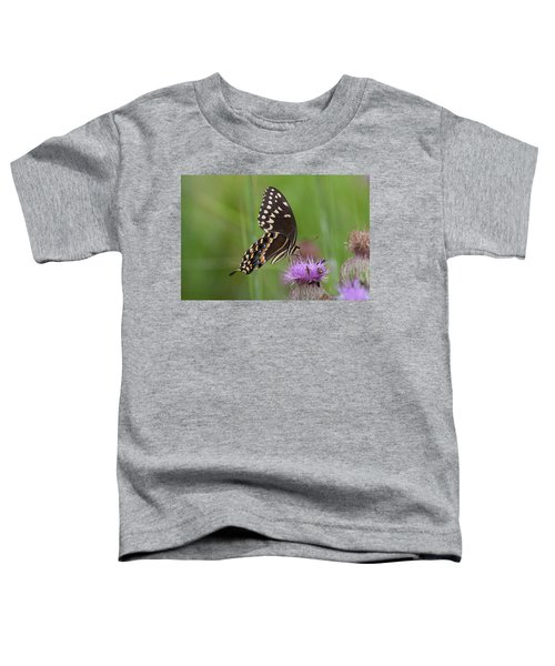 Palamedes Swallowtail And Friends Toddler T-Shirt
