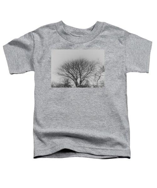 Pale Shades Toddler T-Shirt