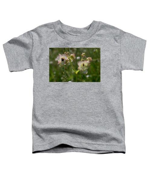 Pale Umbrella Wort Toddler T-Shirt