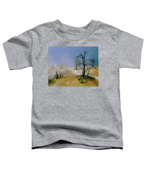 Palette Springs Toddler T-Shirt
